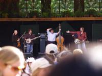 Highlight for Album: Telluride House Band